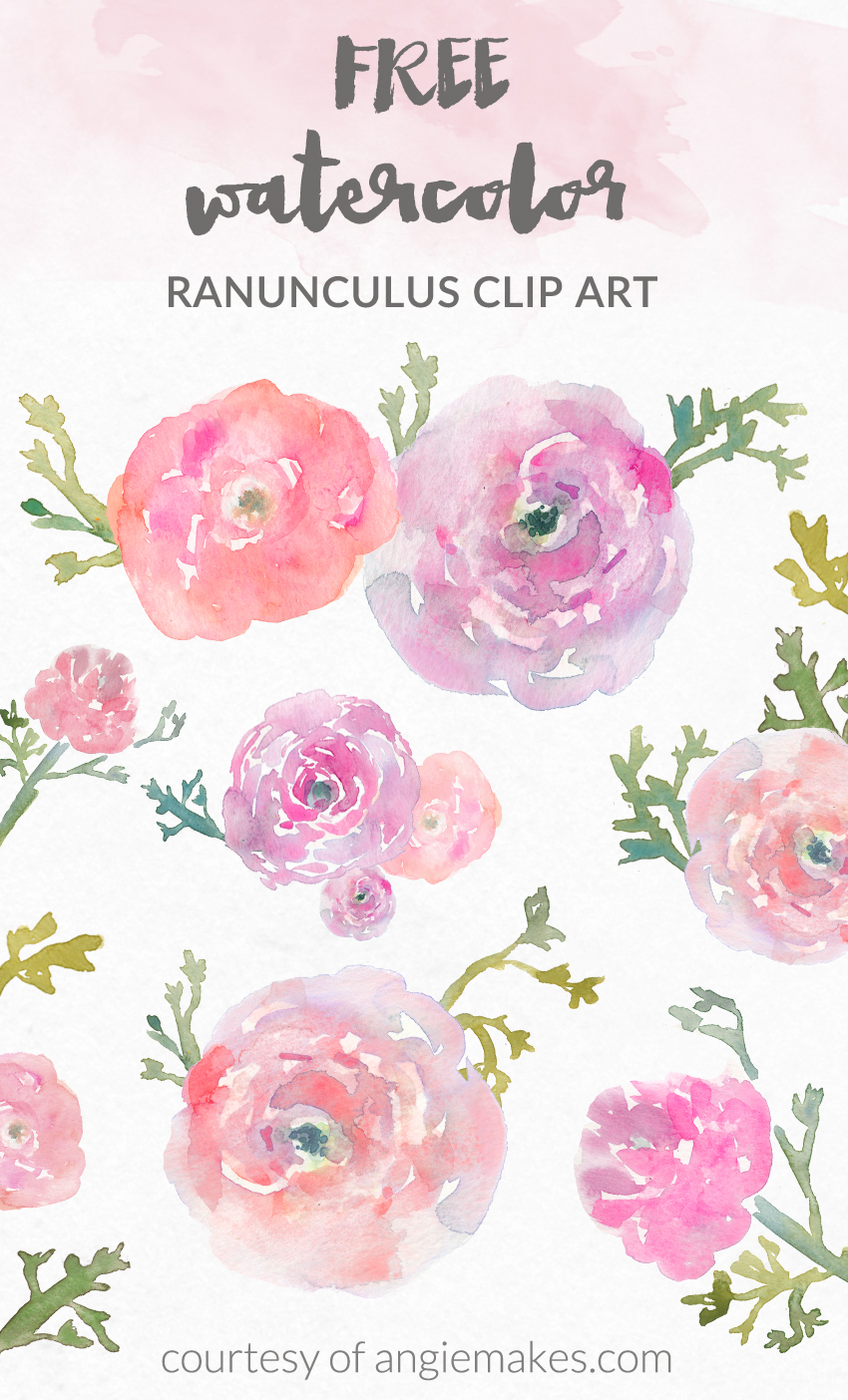 Free Watercolor Flower Clip Art - Watercolor Ranunculus by Angie Makes | angiemakes clipartall.com