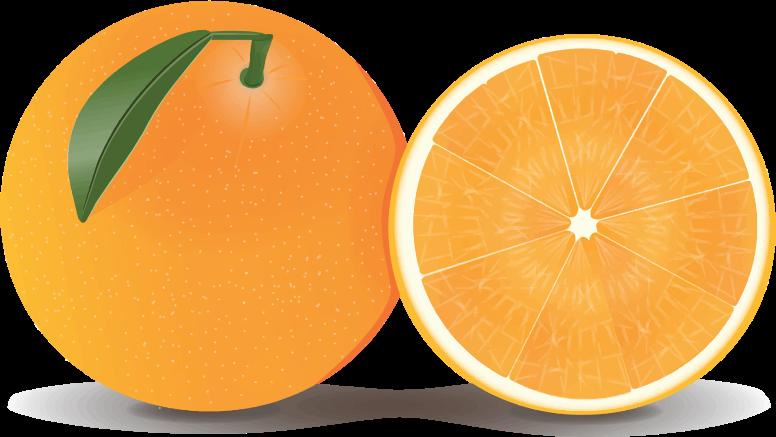 Free Whole U0026amp; Half Orange Clip Ar-Free Whole u0026amp; Half Orange Clip Art-1