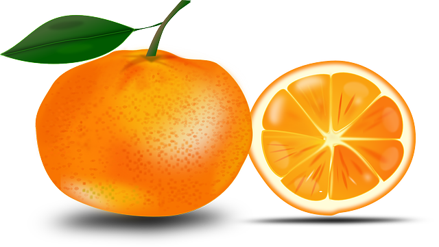 Free Whole u0026amp; Sliced Orange Clip Art