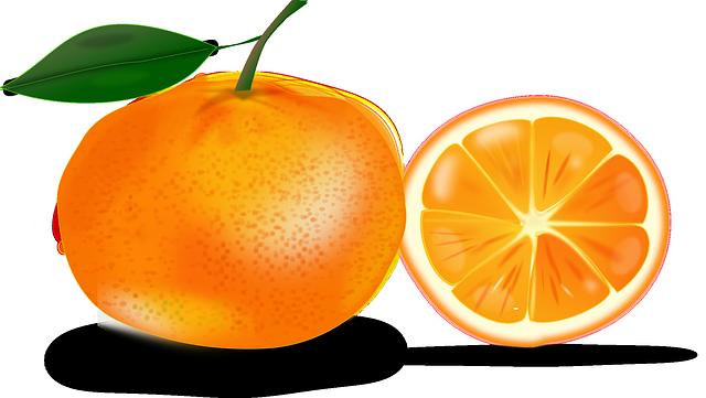 Free Whole U0026amp; Sliced Orange Clip -Free Whole u0026amp; Sliced Orange Clip Art-5