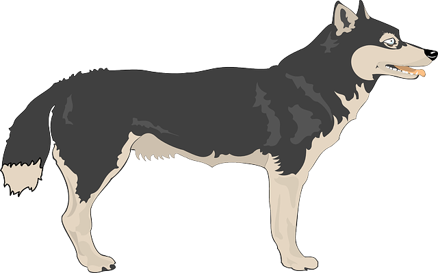 Free Wolf Clip Art-Free Wolf Clip Art-11