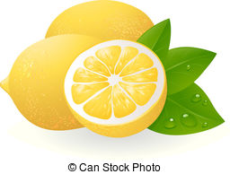 ... Fresh lemons with leaves. Realistic vector illustration