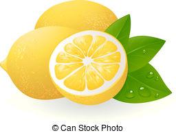 ... Fresh lemons with leaves. Realistic vector illustration