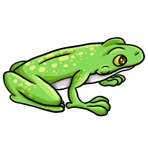 Frog Clip Art 15