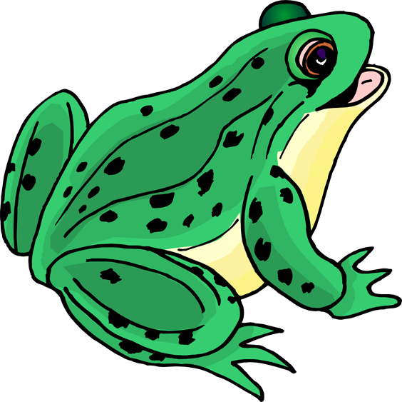 Frog-; Clipart .