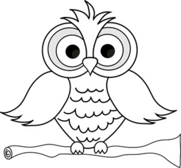 Frog Cute Owl Clipart Black And White Cute Owl Clipart Black And White
