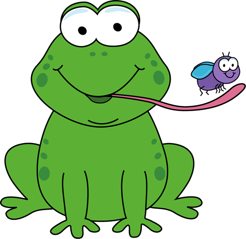 Frog Eating a Fly-Frog Eating a Fly-1