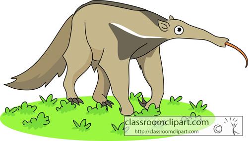 From: Anteater Clipart. Anteater_06.jpg-From: Anteater Clipart. anteater_06.jpg-15