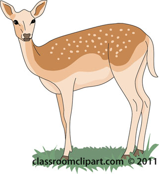 From: Deer Clipart-From: Deer Clipart-14