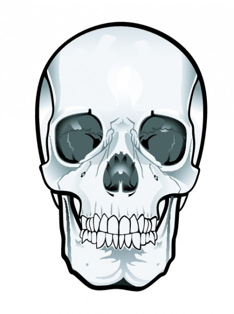 Frontal skull clipart vector free download