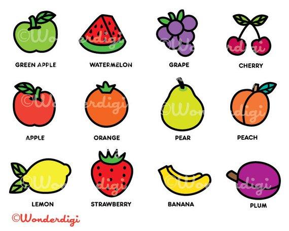 Fruit Clipart-Clipartlook.com-570