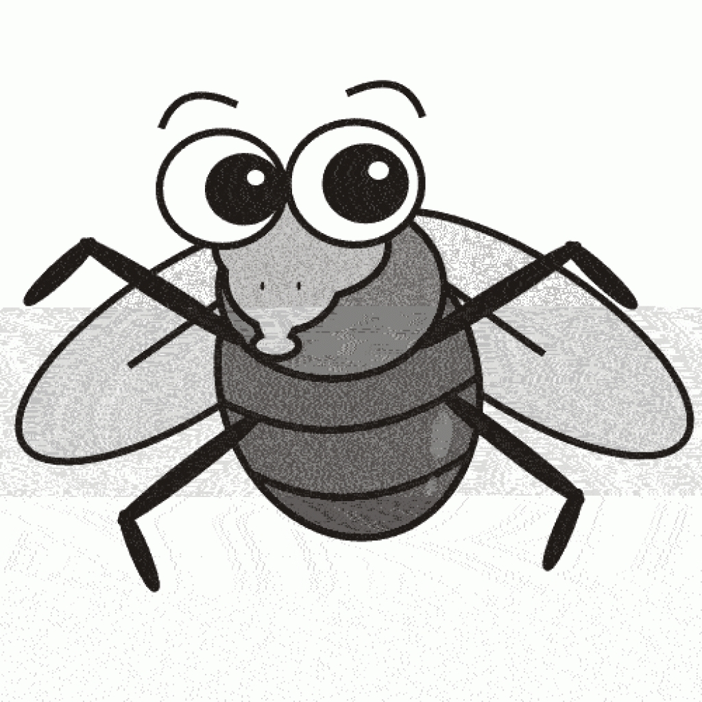Fruit fly clipart - ClipartFest
