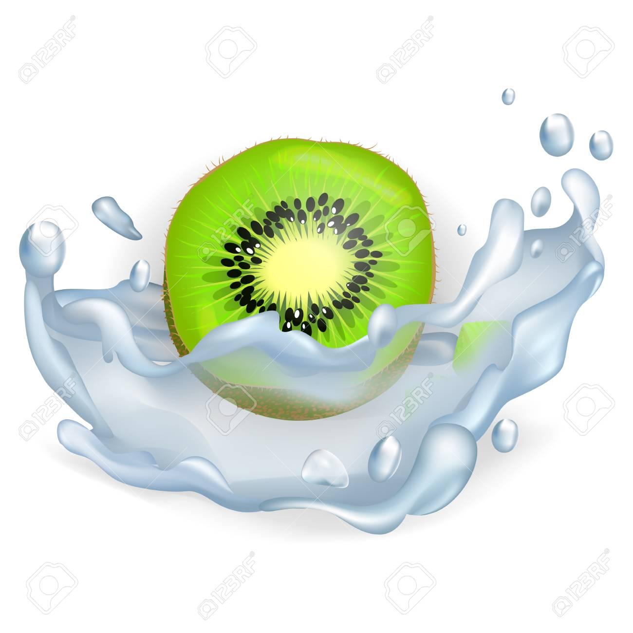 Green Slice of Kiwi Fruit in Water Splash Closeup Stock Vector - 87289147