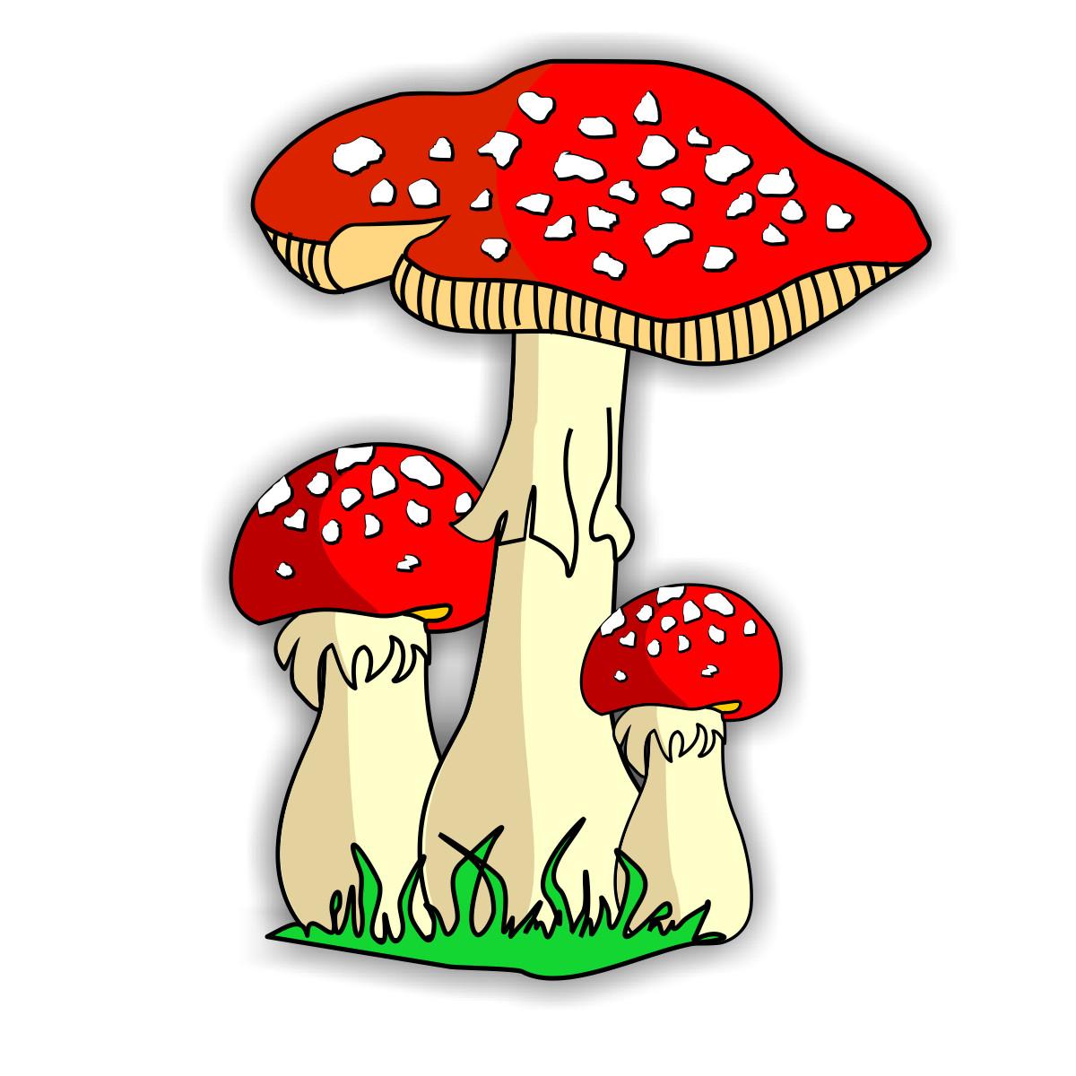 Fungi Clipart Clipart Best-Fungi Clipart Clipart Best-5