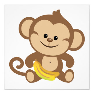 Funny baby monkey pictures .