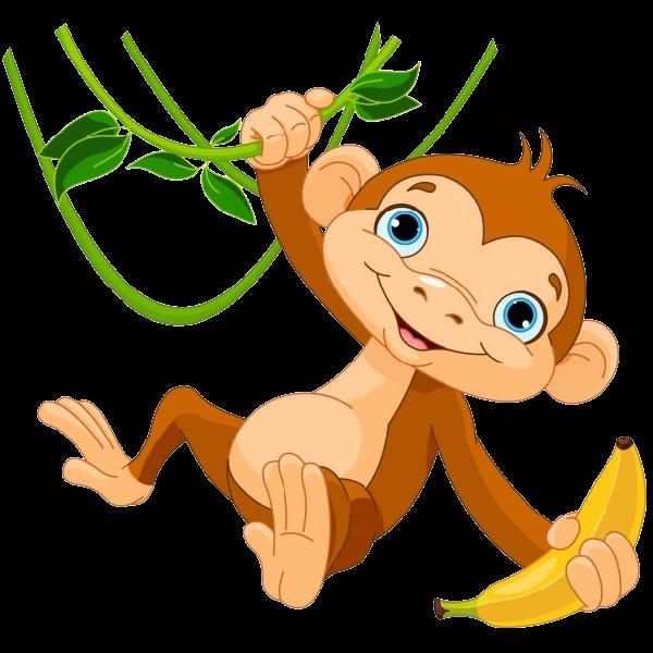 Funny Monkey Images-Funny monkey images-6