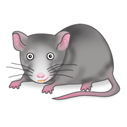 Funny Rat Icon Png Clipart Im - Clipart Rat