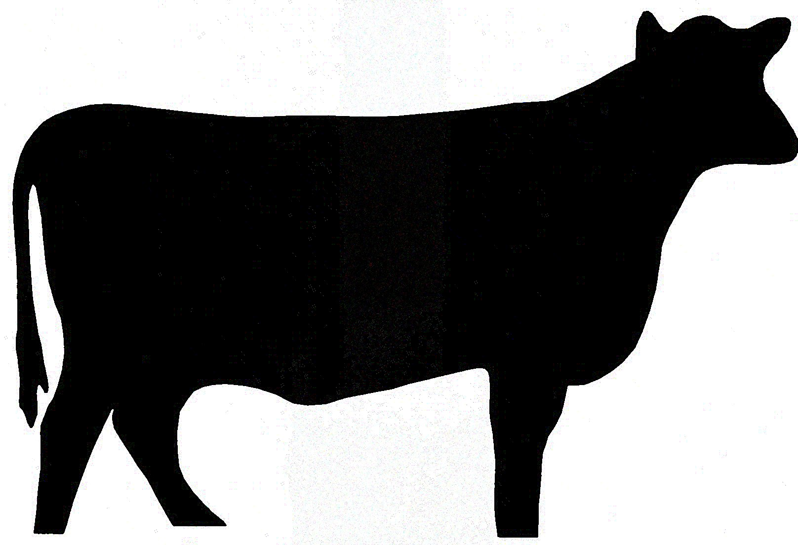 Galleries Related Beef Cow Clip Art Chic-Galleries Related Beef Cow Clip Art Chicken Silhouette Clip Art-16