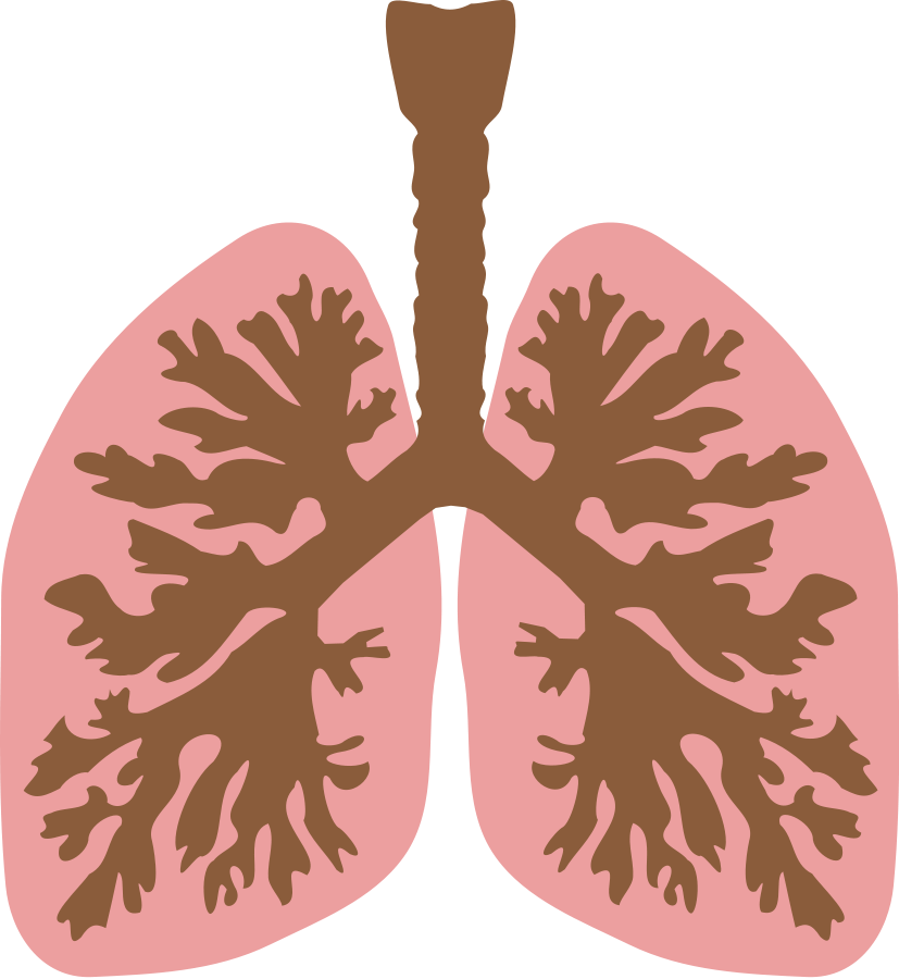 Gallery For Copd Lungs Clip Art