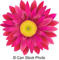 Gerbera flower Clipartby photonewman1/16; Pink Gerbera, With Gradient Mesh, Vector Illustration
