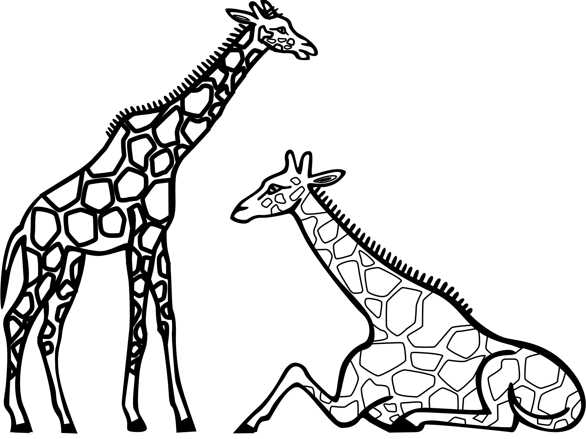 Giraffe Clipart Black And Whi - Zebra Clipart Black And White