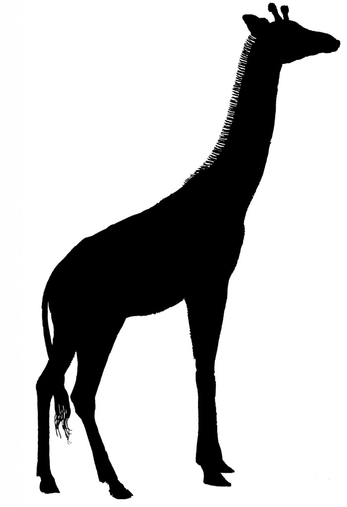 Giraffe Silhouette Flickr Photo Sharing u0026middot; Telecanter\u0026#39;s Receding Rules August 1