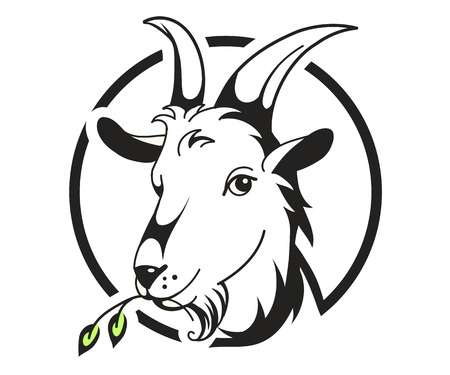 Head Of Goat On White Background, Vector-Head of goat on white background, vector illustration-17