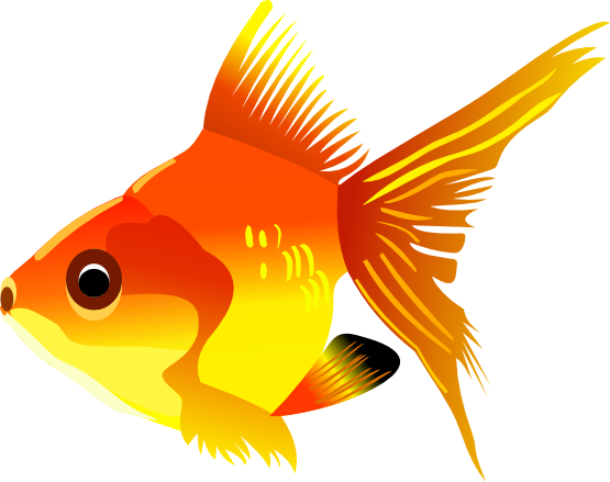 Goldfish Clip Art Images Free For Commer-Goldfish Clip Art Images Free For Commercial Use-8