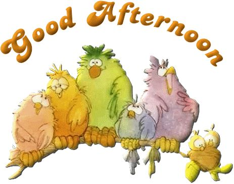 Good Afternoon-Good Afternoon-4