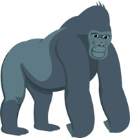 Ground Dwelling Gorilla Primate Clipart.-ground dwelling gorilla primate clipart. Size: 48 Kb-15