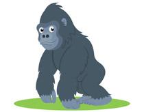 Ground Dwelling Gorilla Primate Clipart.-ground dwelling gorilla primate clipart. Size: 48 Kb-16