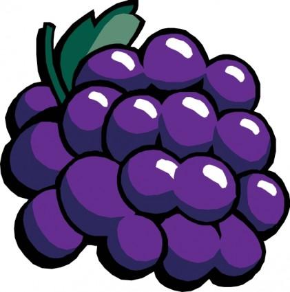 Grape Clip Art-Grape Clip Art-3
