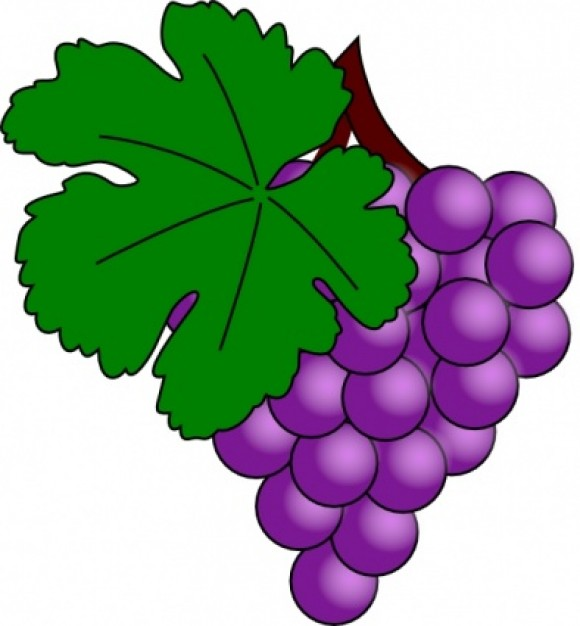 Grape Clip Art-Grape Clip Art-13