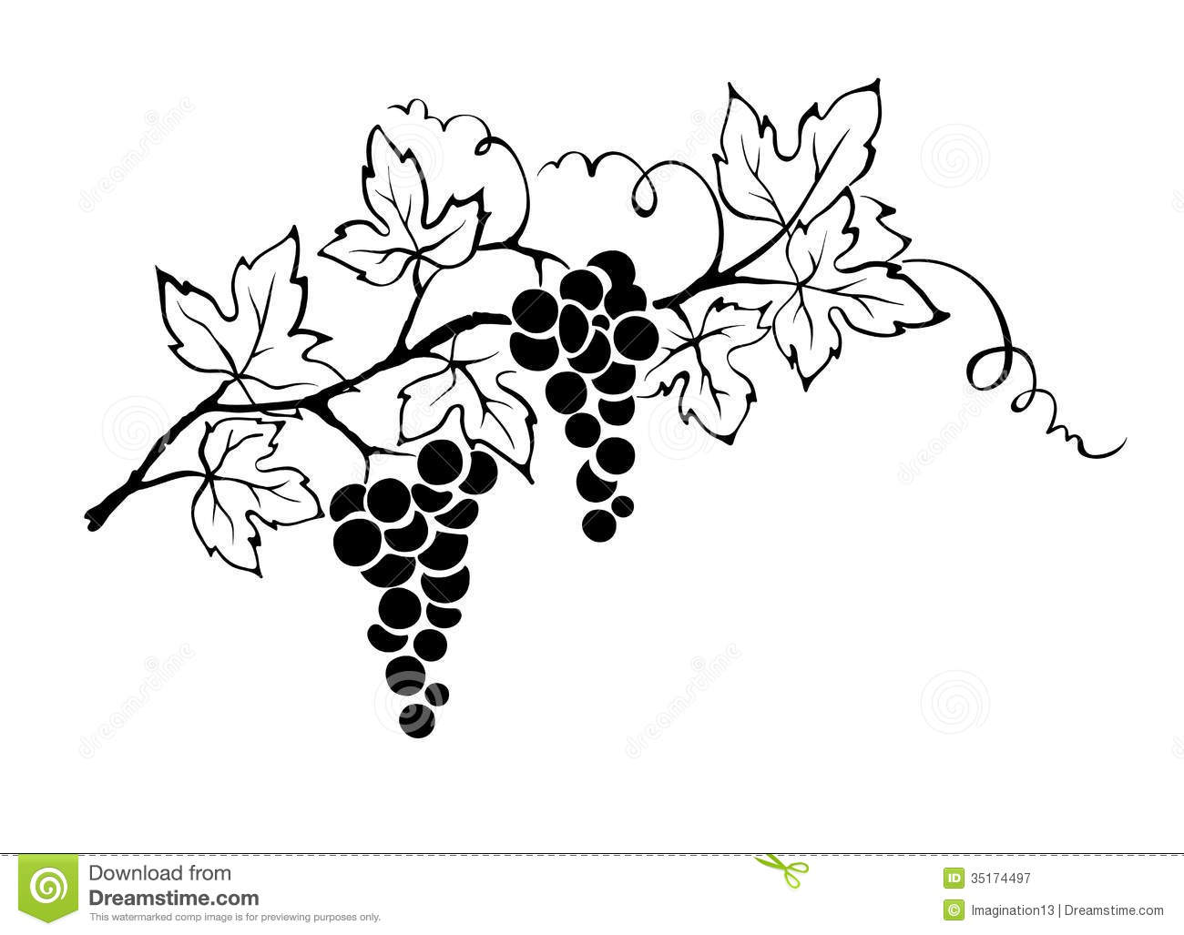 Grape Vine Free Clipart #1