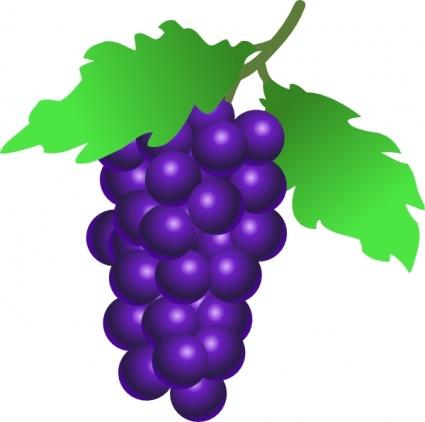 Grapes Clip Art-Grapes Clip Art-5