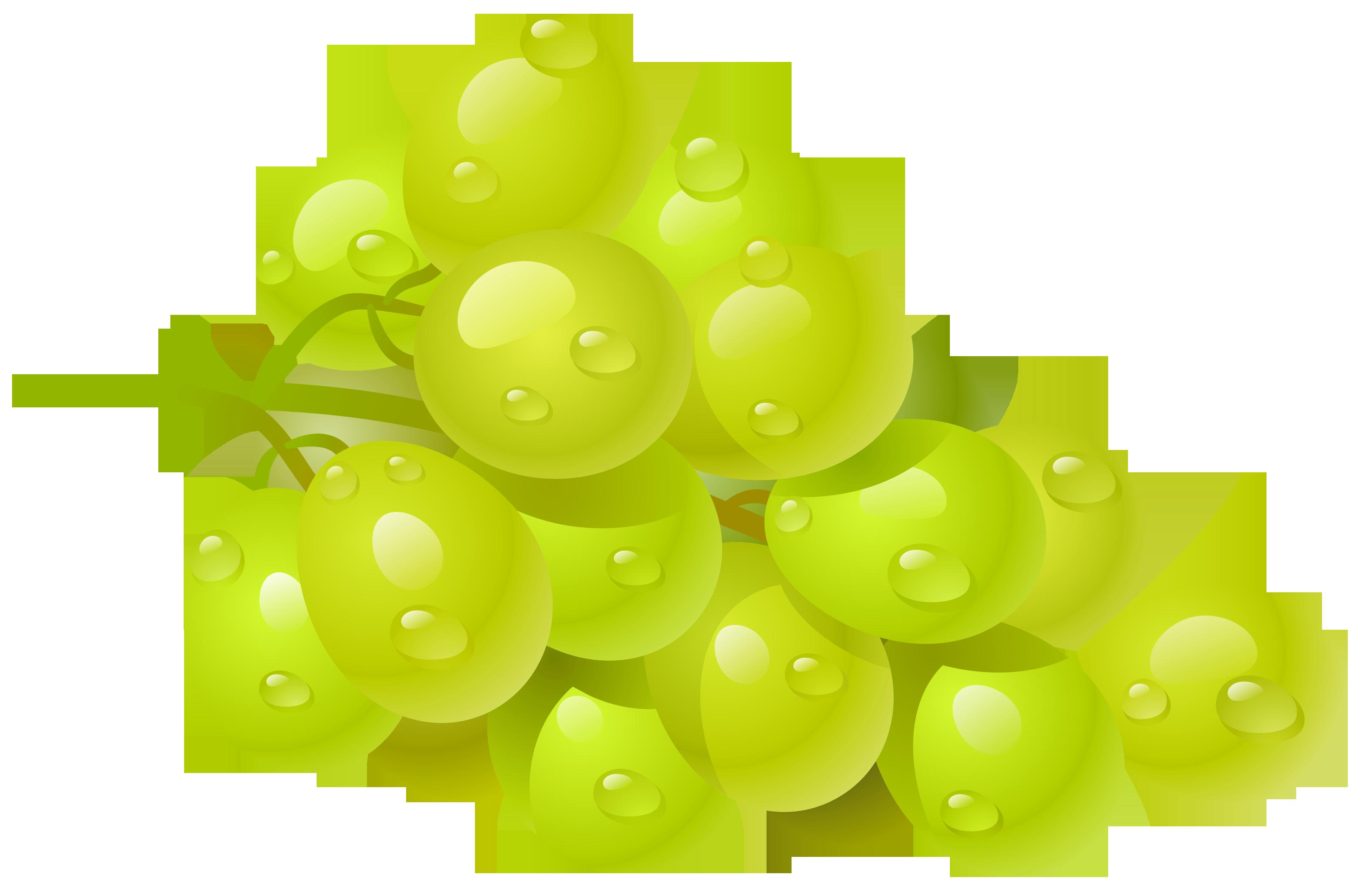 Grapes clip art free clipart images imag-Grapes clip art free clipart images image-15