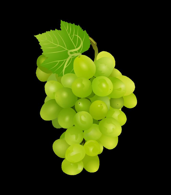Grapes Clipart-Clipartlook.com-715