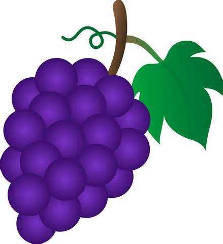 Grapes clipart 4-Grapes clipart 4-6