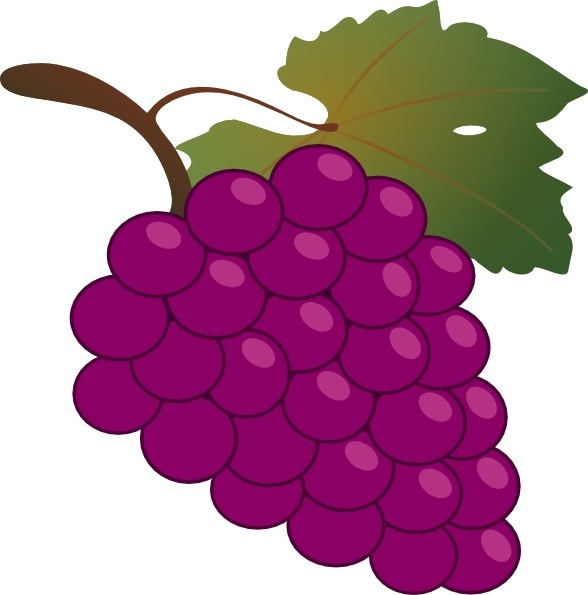 Grape clip art Free vector 175.48KB