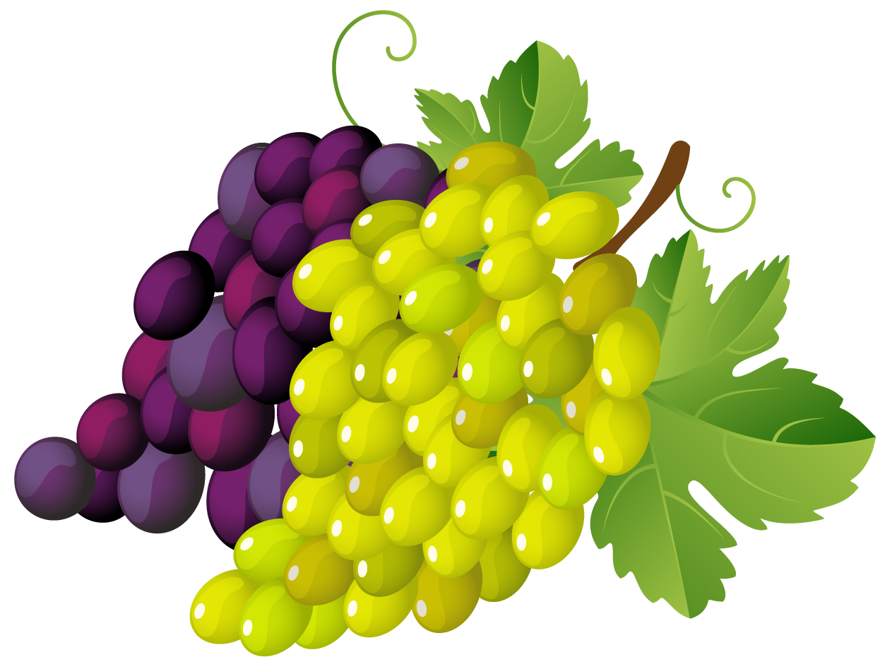 Painted Grapes PNG Clipart