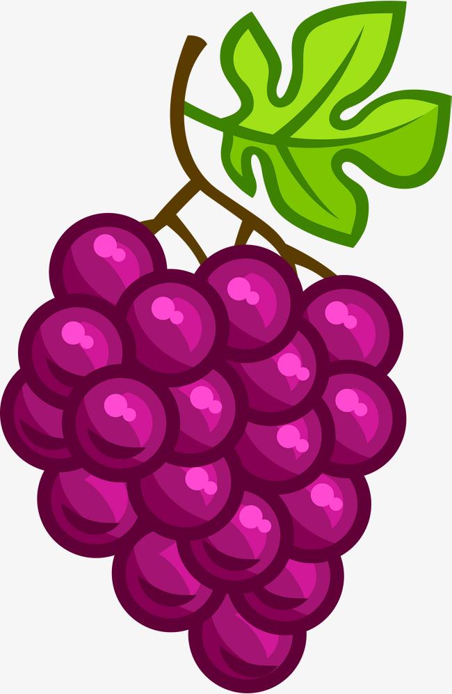 purple cartoon grapes, Cartoon Clipart, Violet, Cartoon PNG Image and  Clipart