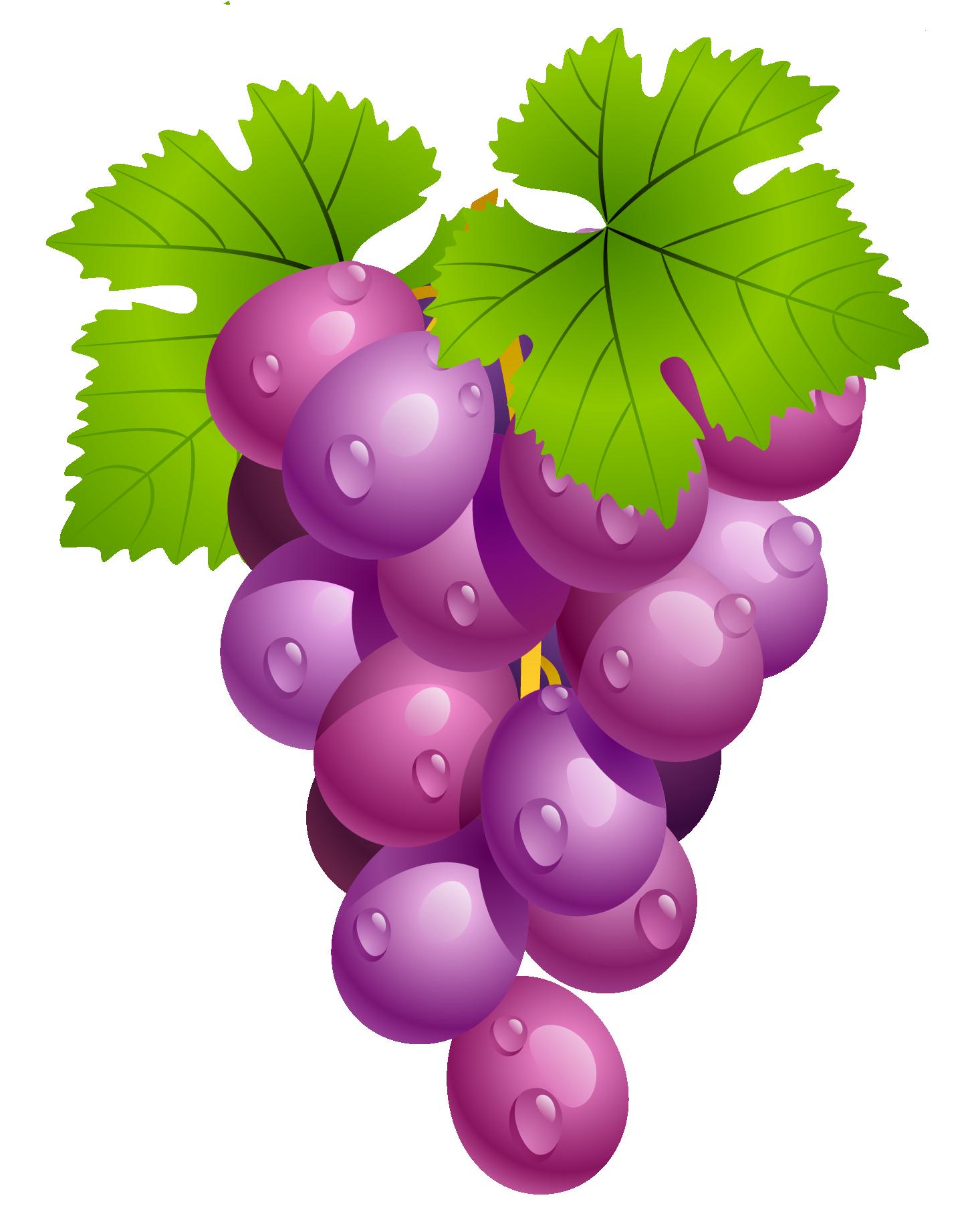 Vegetable Pictures, Cute Art, Decoupage, Food Clipart, Watercolor Fruit,  Fruit Art