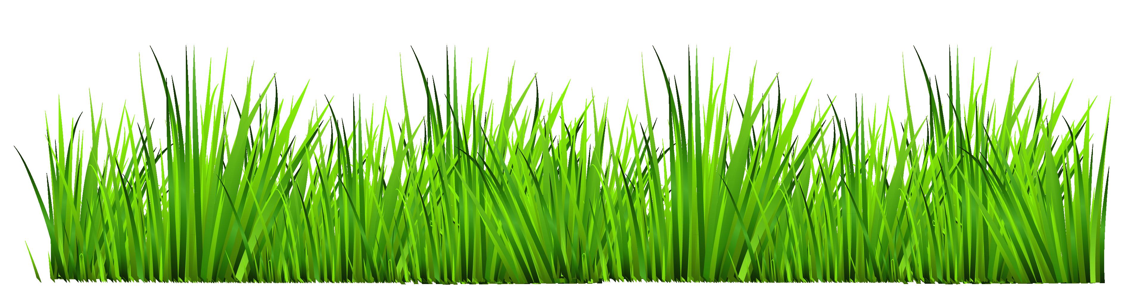Grass Clipart-grass clipart-4