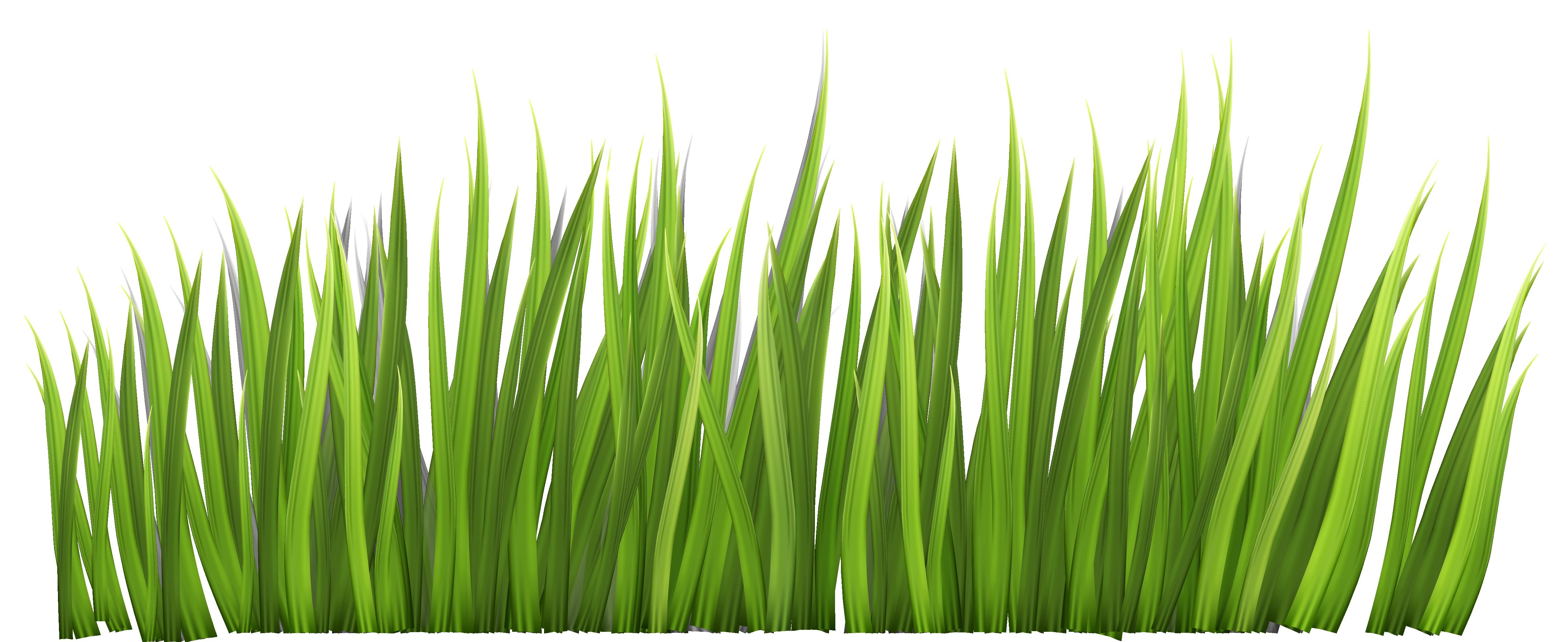 Grass Clip Art ..