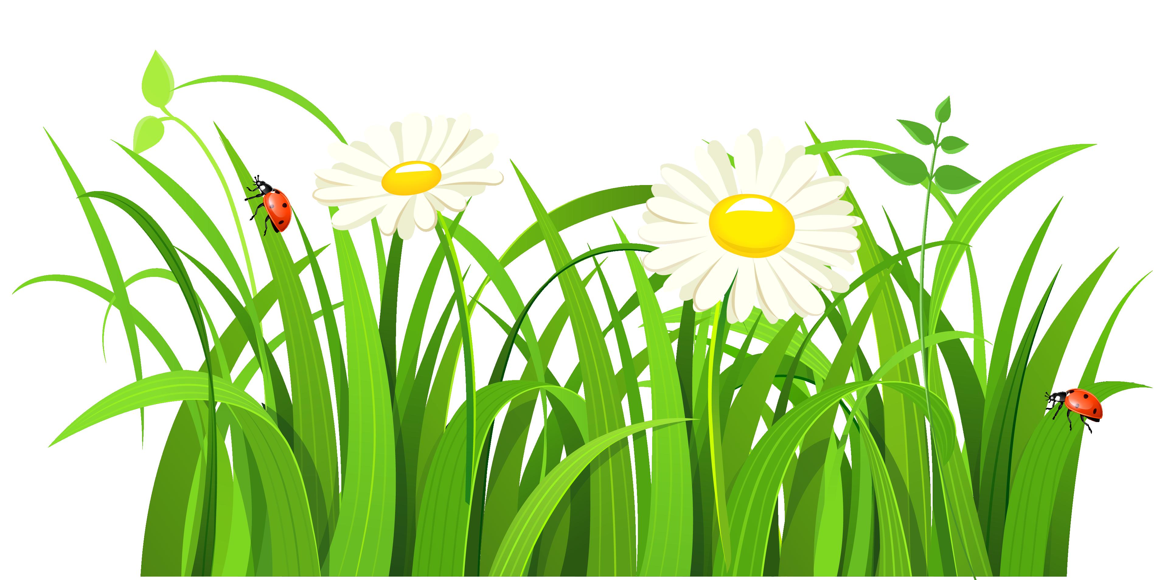 Grass Clipart Clipartcow-Grass clipart clipartcow-10