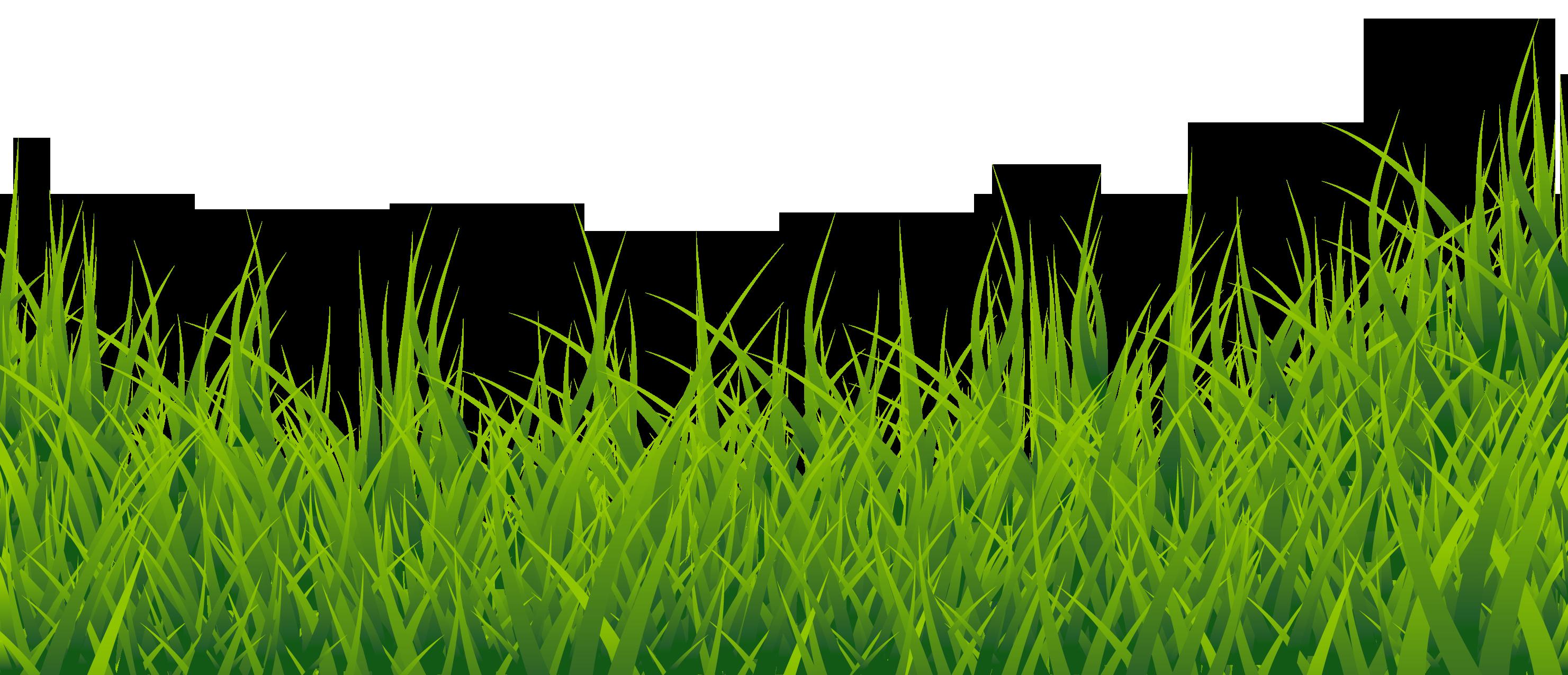Grass Clipart-Grass clipart-11
