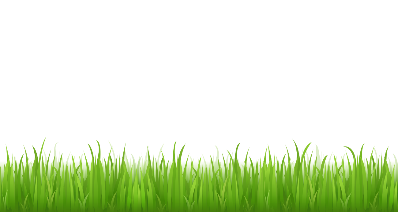 Grass Clipart Picture For Bottom Design-Grass clipart picture for bottom design-13