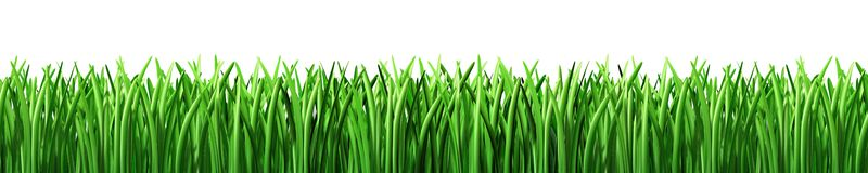 Grass lawn clipart free clipart image