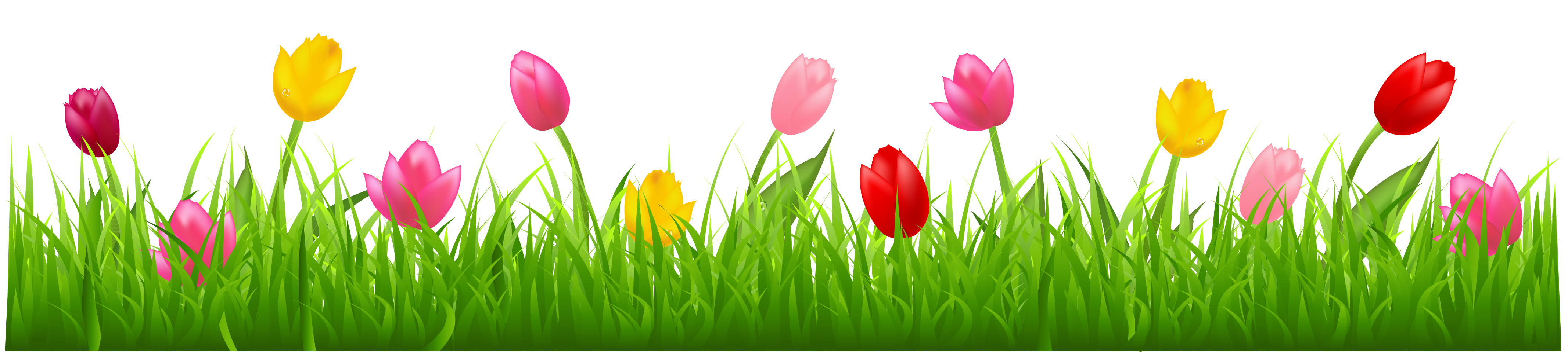 Grass with Colorful Tulips PNG Clipart | Spring Borders | Pinterest | Grasses and Tulip