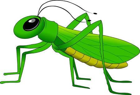 Cheerful, Small, Green Grasshopper-cheerful, small, green grasshopper-2